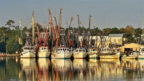 Cruising the ICW - The shrimping fleet in McClellanville, SC. Photo by Jody Reynolds