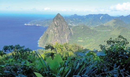 The view from the magnificent Pitons. Photo by Rosie Burr