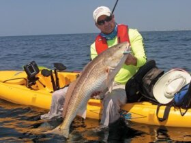 Jerry McBride hoists a bull red drum caught from his Hobie kayak fishing. Photo by Jeff Dennis