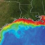 "Dead Zone Summer"" Summer phytoplankton conditions along the Gulf Coast. Image courtesy of NASA/Goddard Space Flight Center Scientific Visualization Studio"
