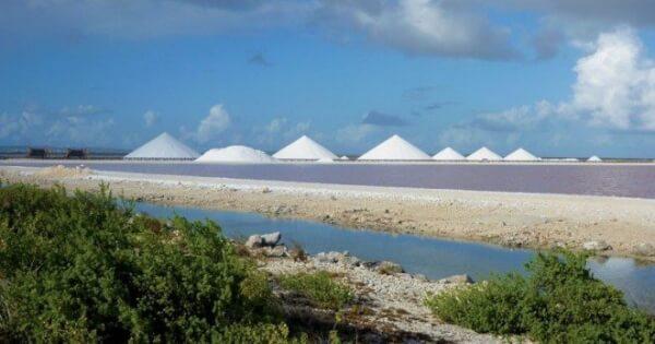 Salt mounds, heading back north towards Kralendijk along the coast. Photo by Liesbet Collaert