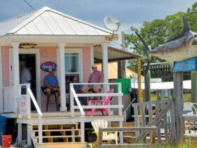 The pink bait shop at the Ocean Springs marina is the gathering place for boaters, charter captains and shrimp and oyster fishermen. Photo by Troy Gilbert