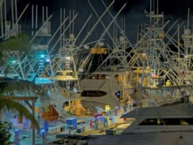 USVI Blue Marlin Tournament. Photo: Dean Barnes