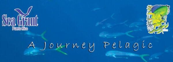 Lead-a-journey-pelagic-cover-art-2_17_14