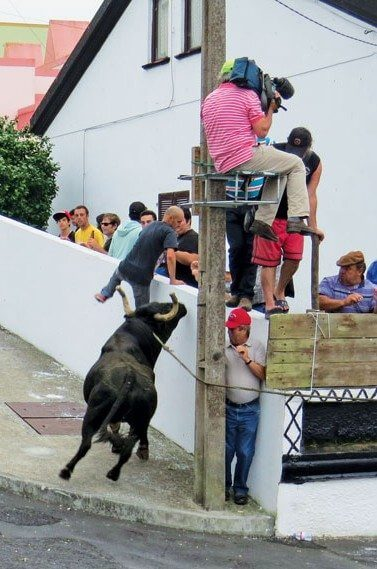 Bullfight on a rope in Angra, Terceria. Photo by Barbara Hart