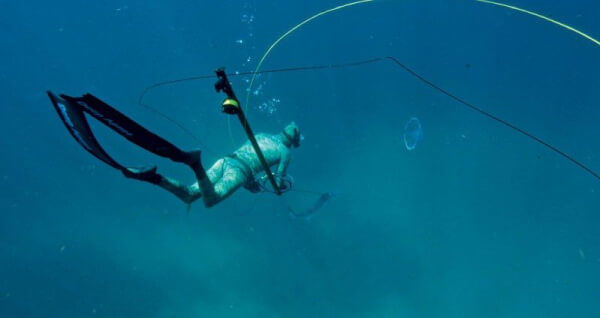 South Florida Freediving and Spearfishing.Photography Courtesy of Walker Blanco