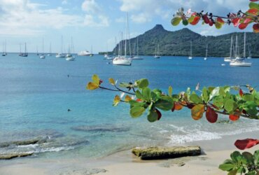Return to Grenada: A Cruiser Remembers an Invasion: Picturesque Tyrrel Bay is protected from the prevailing winds and is a yachting hot spot