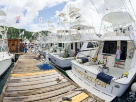 Budget Marine Spice Island Billfish Tournament