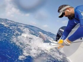 Sports Fishing Tournament Preview: Action at the St. Martin Billfish Tournament. Photo courtesy of Stephan Petit/St. Martin Billfish Tournament
