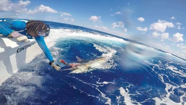 Saint Martin Billfish Tournament