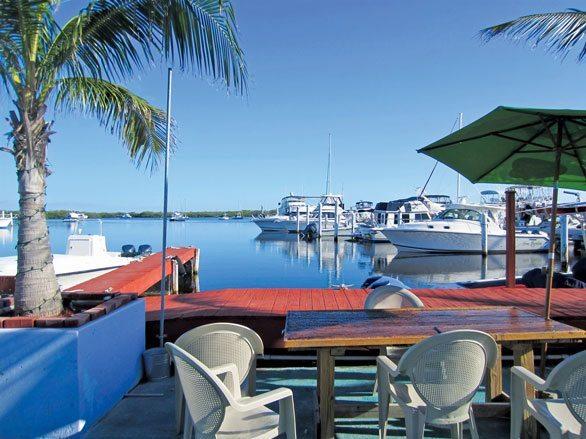 Mangrove Marina Florida Keys