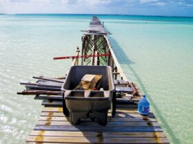 southern abacos