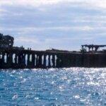 Bimini Islands Bahamas