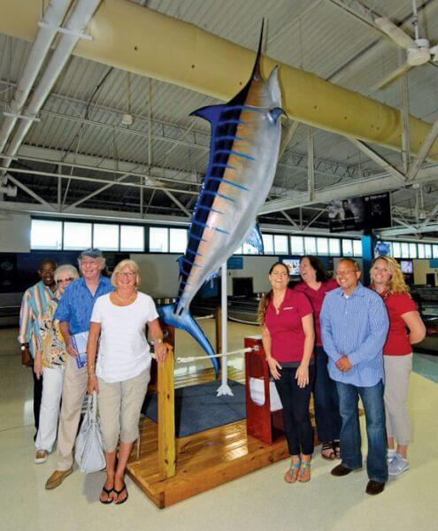 blue marlin display