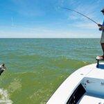 Boenfish & tarpon trust