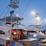 Atlantic Blue Marlin Tournament