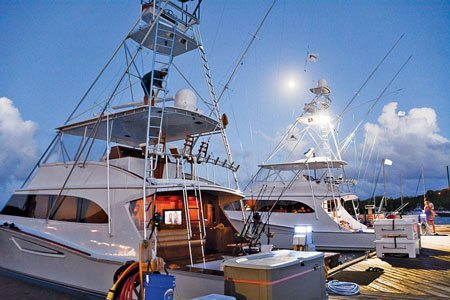 Atlantic Blue Marlin Tournament