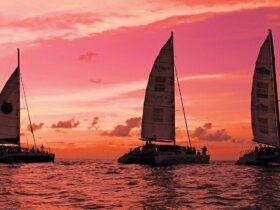 Pretty in Pink – Sint Maarten Sunset Cruise in aid of Breast Cancer Awareness. Photo: GaryBrown/OceanMedia
