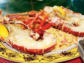 Anegada lobster
