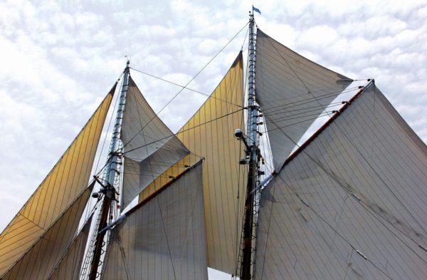 Tops'ls flying. Photo: OceanMedia