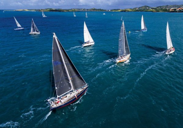 A pelican's eye view … Photograph Courtesy of Grenada Sailing Week