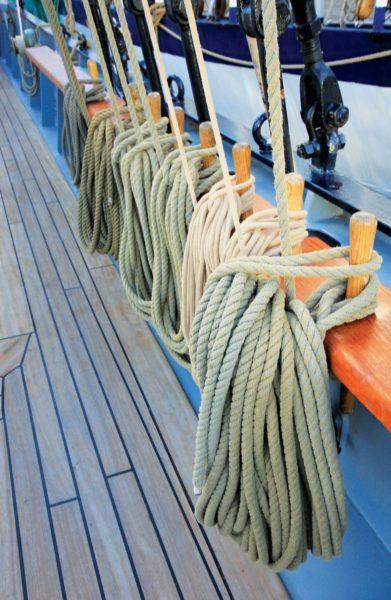 Wylde Swan – shipshape and Bristol fashion. OceanMedia photo