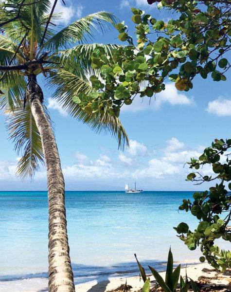 The long beach in the lee of Marie-Galante. Photo Jan Hein