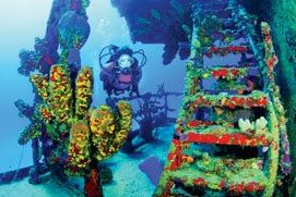 Butler Bay wrecks, St. Croix, USVI. Courtesy of USVI Department of Tourism
