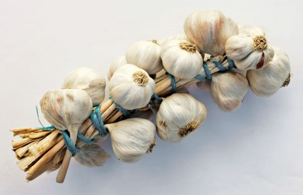 Garlic might improve your libido but won't do much for your breath. Photo: Luis Miguel Bugallo Sánchez/ Wikipedia Commons