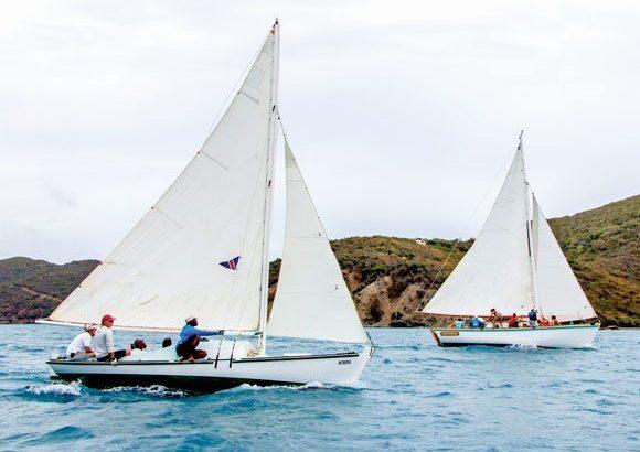 Tortola sloops
