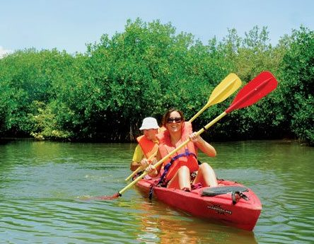 Eco tours with Tri-Sports in Simpson Bay Lagoon