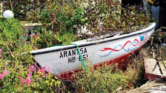 Bringing traditional fishing boats back to life. Only a few months ago Arantsa was found in a back yard, covered in weeds. Photo by Els Kroon
