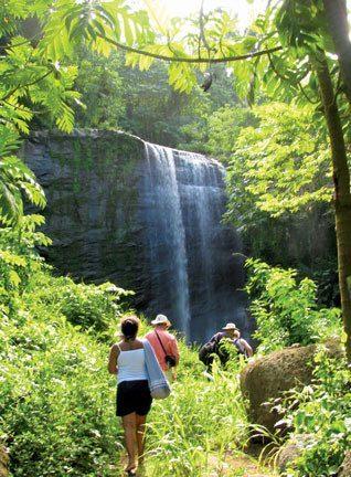 Stand under Mount Carmel Falls. Photo by Rosie Burr