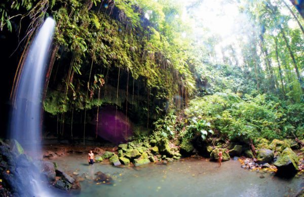 Emerald Pool, Dominica. Photo: Aneil Lutchman / Wikipedia