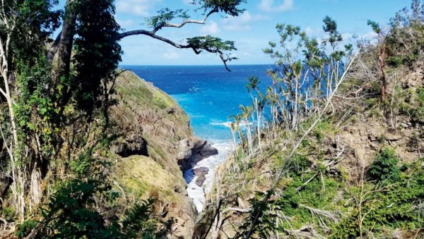 Always Beautiful, Dominica, the Land of Many Rivers. Photo: Byron Sarchet