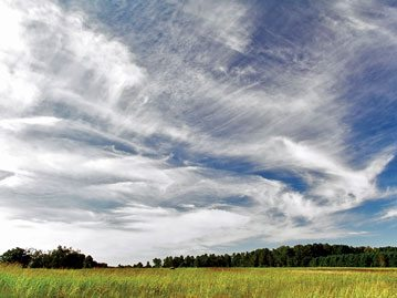 Cirrus clouds accompanied by cirrocumulus upper center and upper right. Photo: Piccolo Namek / Wikipedia