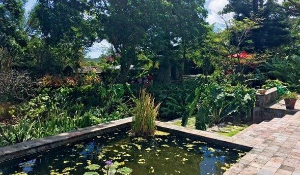 The Golden Rock Inn, our lunch spot garden view. Photo by Toni Erdman