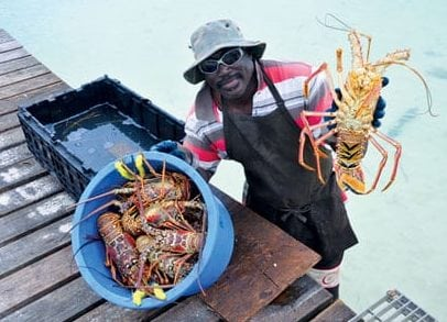 Anegada is famous for its lobster and lobster fishermen
