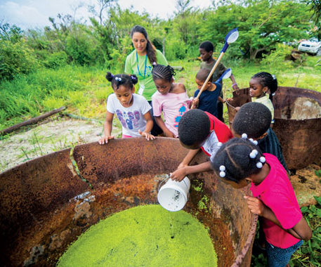 Youngsters search for aquatic creatures in historic boiling coppers