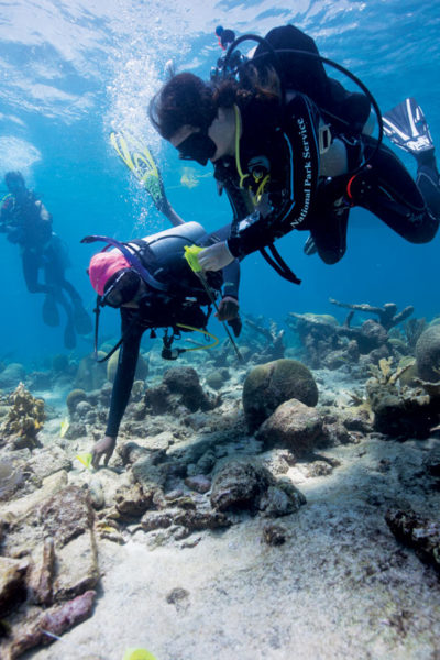 The finds are carefully documented while still in place. Photography courtesy of Dr. Meredith Hardy