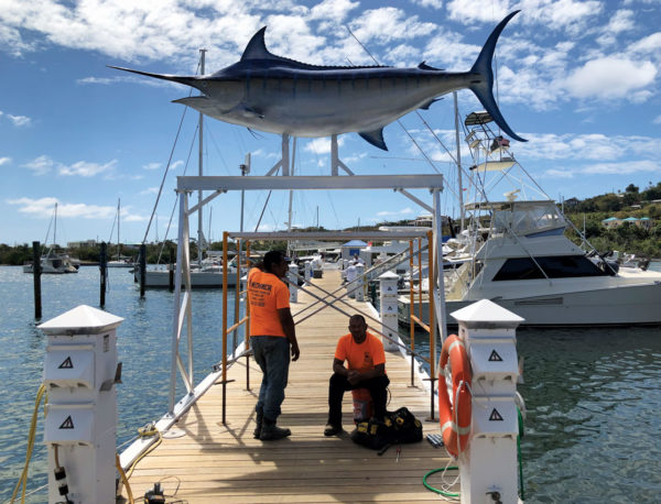 AYH's 'A' Dock, under the newly erected blue marlin mount that was gifted to the sports fishermen of the V.I. by Bill Gray, of Gray's Taxidermy. Credit: Jimmy Loveland