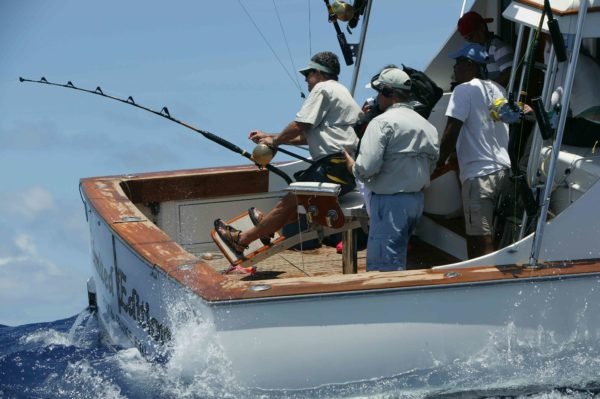 Photos from Chris Hackshaw/St. Lucia
