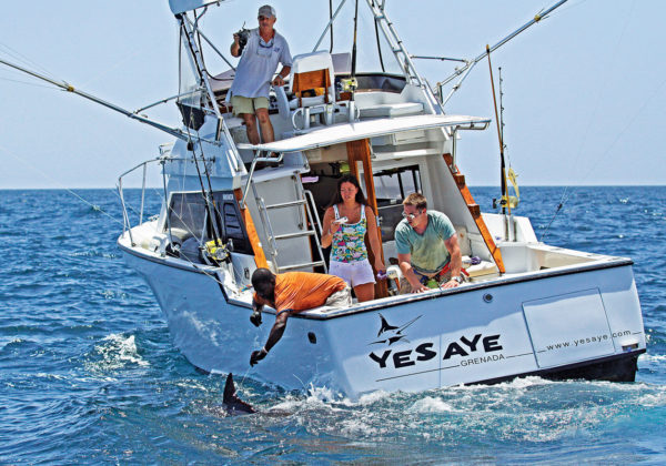 Come to Grenada Deep Sea Fishing on the Top Grenadian Sport Fishing boat since 1998!! True Blue Sportfishing at the Port Louis Marina, in Grenada
