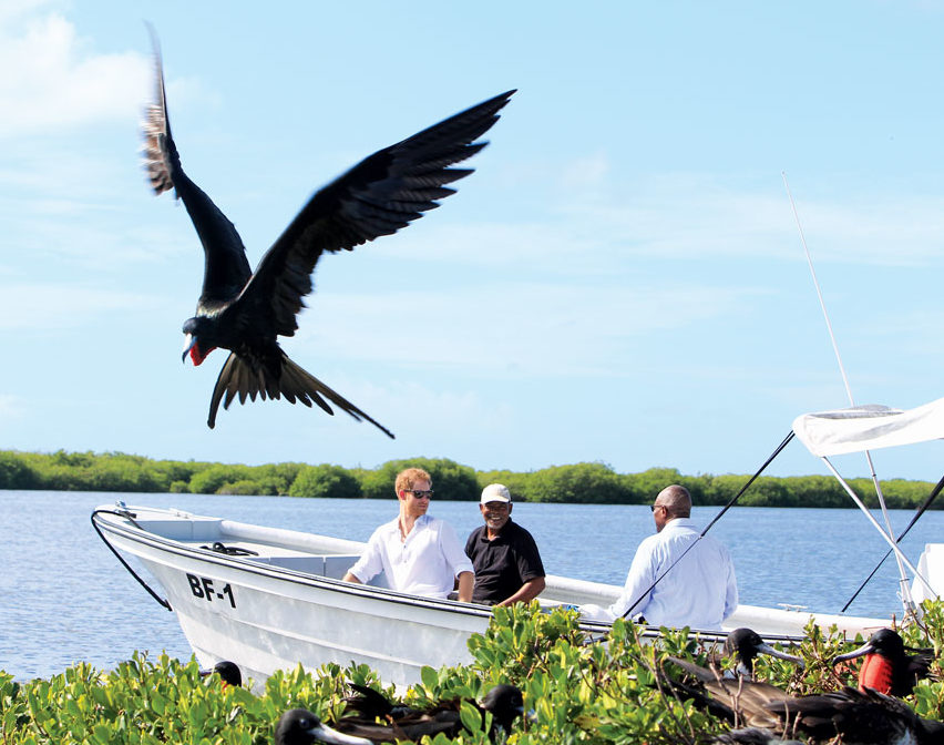 Image Courtesy of Antigua and Barbuda Tourism Authority