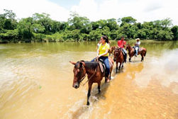 Horseback Riding Belize Tourism Board