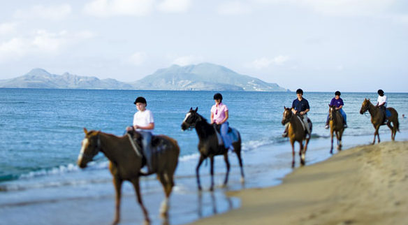 Horseback Riding Nevis Tourism Authority
