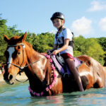 Tobago - Being with Horses