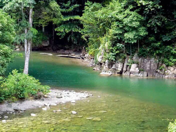 Top Caribbean Rivers to Explore - Shark River, Trinidad