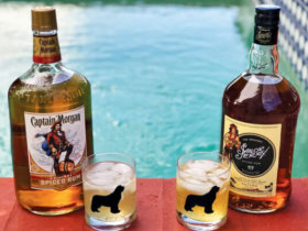 Captain Morgan vs Sailor Jerry