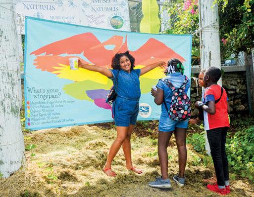 Migratory Bird Festival